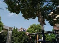 好世凤凰城小区图片