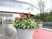 龙湖北城天街小区图片