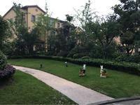 龙湖蔚澜香醍(公寓)小区图片
