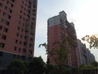 华泽新苑小区图片