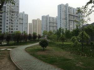 三杨新村一街坊
