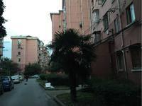 平吉一村小区图片