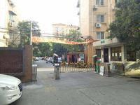 龙柏六村小区图片