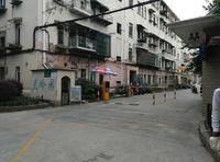 曹杨三村小区图片