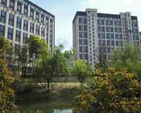 绿地公园广场小区图片