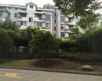 江南星城一期小区图片