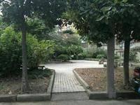 民主花园小区图片