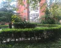 南方新村小区图片