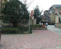 新湖明珠城雅典苑小区图片