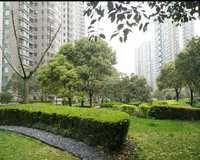 慧芝湖花园小区图片