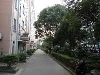 新青浦花苑(公寓)小区图片