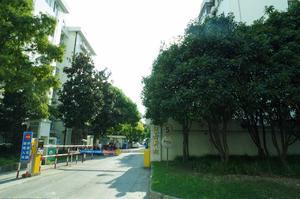 牡丹新村(闵行)