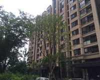 嘉宝梦之湾(公寓)小区图片