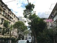 宜川六村小区图片